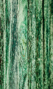 Texture of old wooden heaps of green color