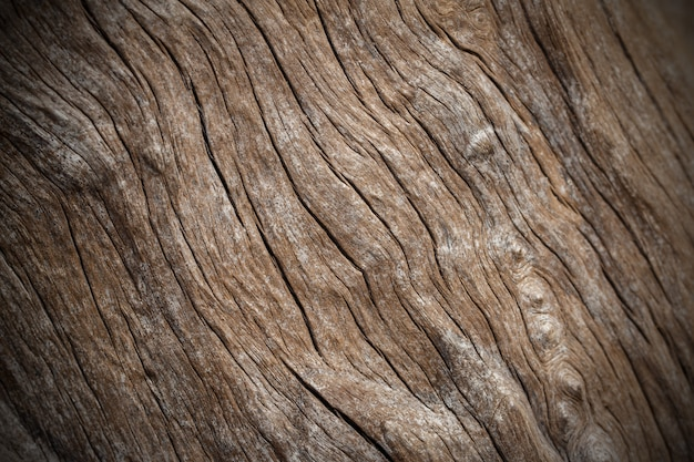 Texture of old wooden natural background