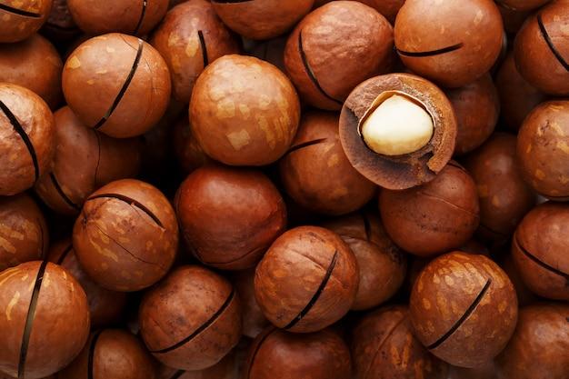 Texture of organic macadamia nut