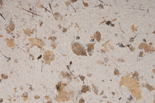Texture of recycled handmade paper with leaves.