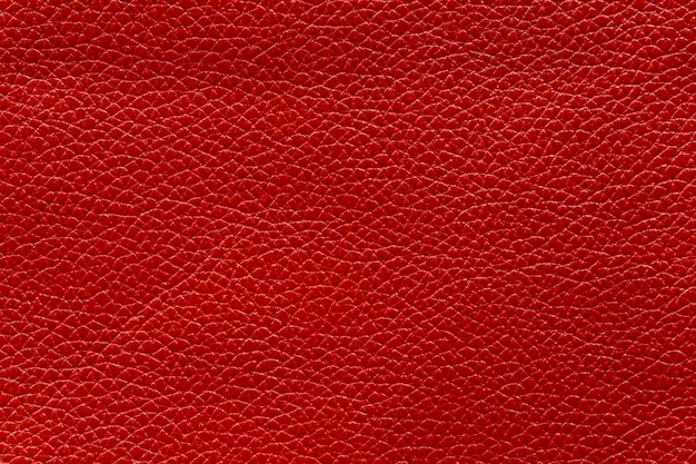 Texture of red cow leather, abstract background.