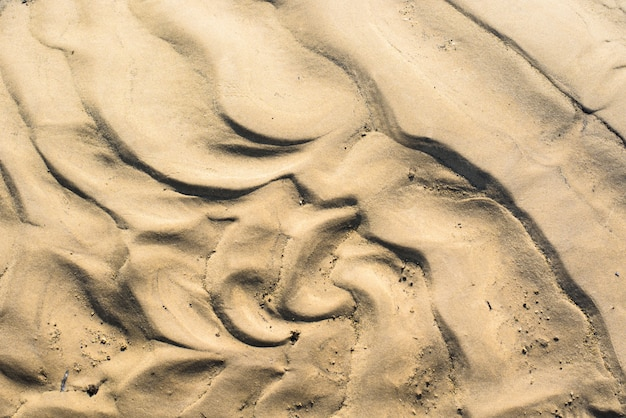 The texture of the sand is yellow.