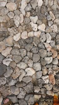 テクスチャ海の岩
