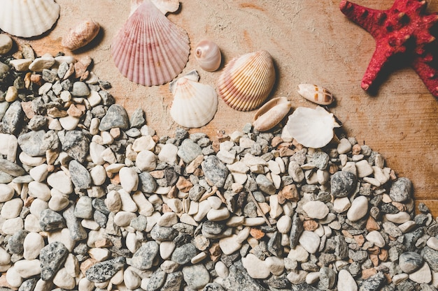 Texture of seashells and pebbles lying on wooden boards