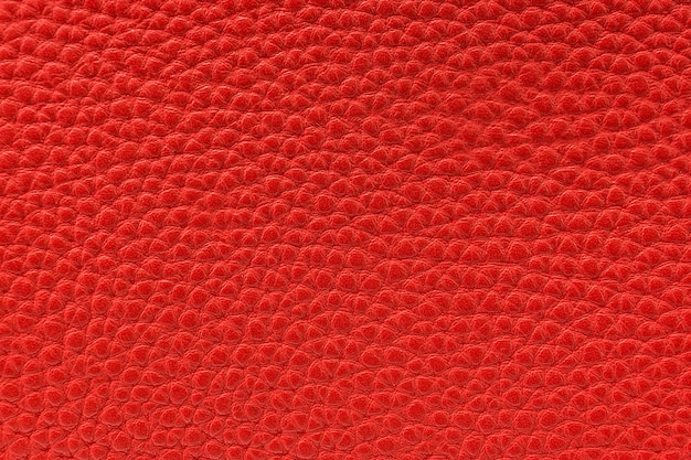 The texture of the skin is red