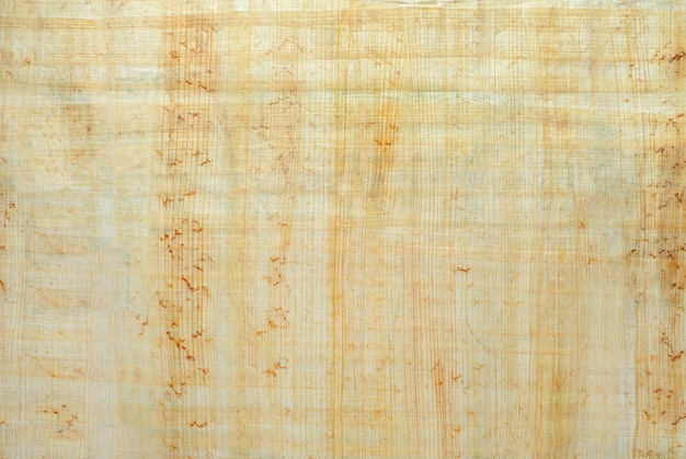 Texture surface of natural egyptian papyrus created by authentic technology