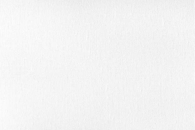 Texture of white canvas with white paint Premium Photo