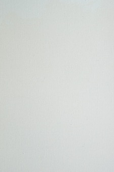 Texture of the white color canvas for the background