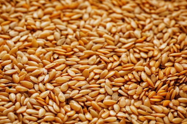 Texture of white flax seeds. useful cereals.