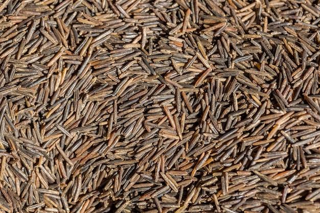 Texture of wild brown rice.