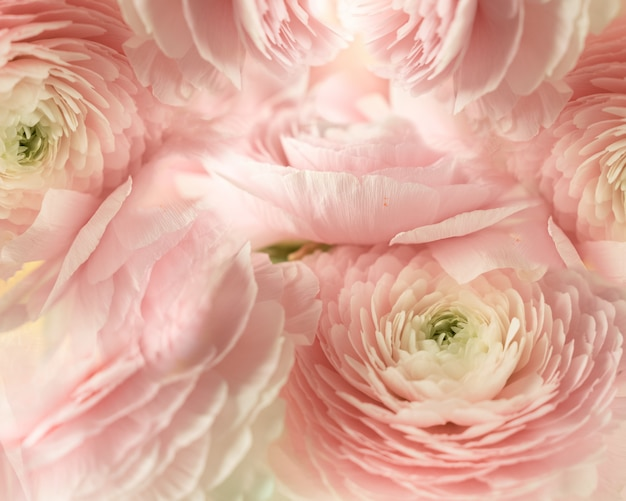 Textured background of pale pink flowers