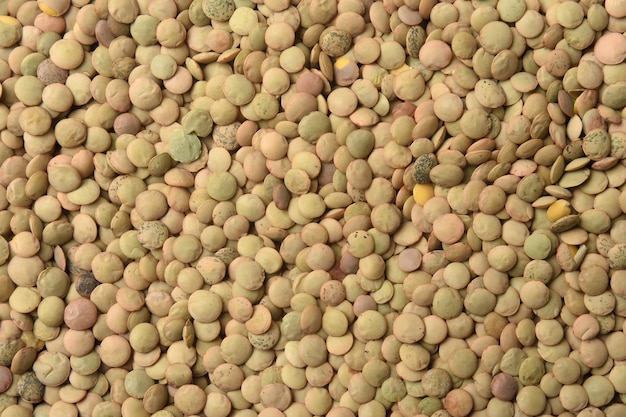 Textured of  salamanca lentils on white background