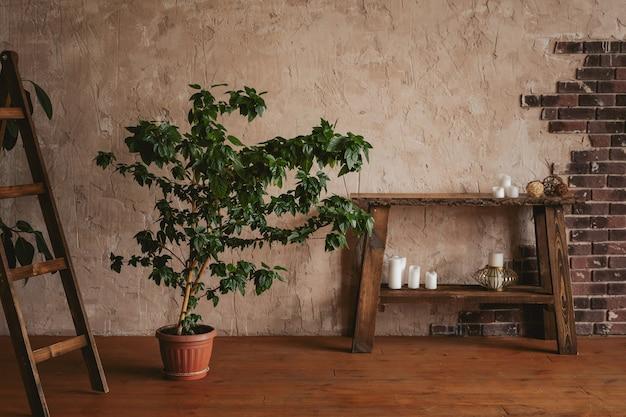 レンガ、ベンジャミンのイチジク、木製のあぶみ、コンソールを備えた織り目加工の壁。