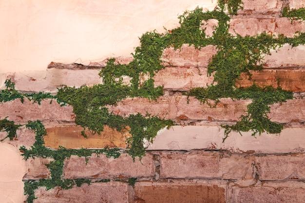 장식 석고와 벽돌 질감된 벽 이끼 배경으로 오래 된 콘크리트 벽돌 벽