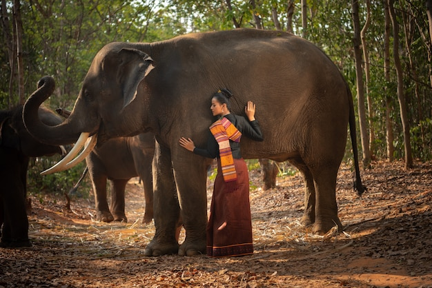 Thai beautiful girl with elephants