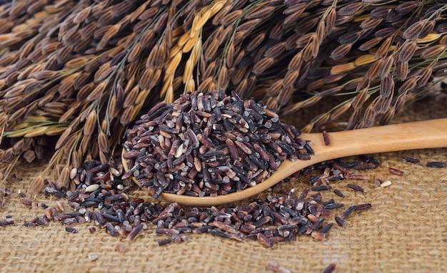 타이 블랙 재스민 쌀 (쌀 베리)