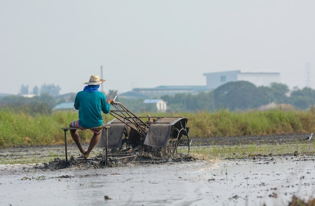 Thai farmer driving tiller tractor to plow paddy field  prepare new rice