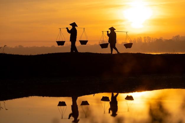 タイの農民は、日が沈む前に家に帰る準備をするためにバスケットを運んでいます。シルエット農家。シルエットライト。