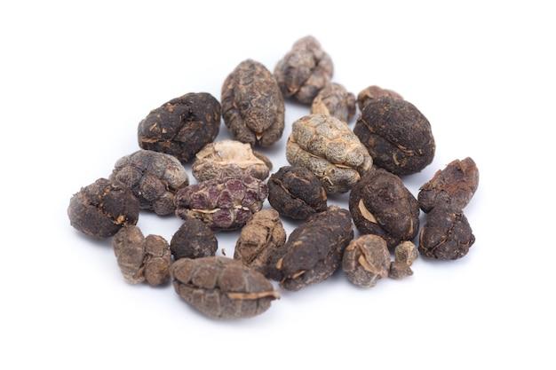 Thai herb name amomum  villosum wall.or bustard cardamom isolated on white background