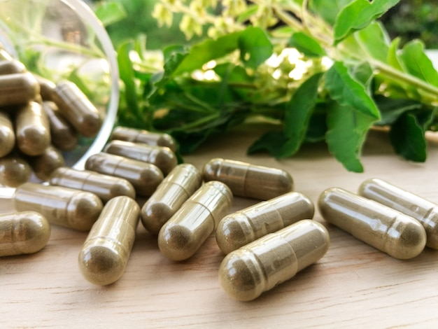 Thai herbal capsule made of holy basil leaves