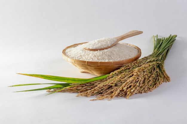 Thai jasmine rice in a basket and isolated rice on a white background
