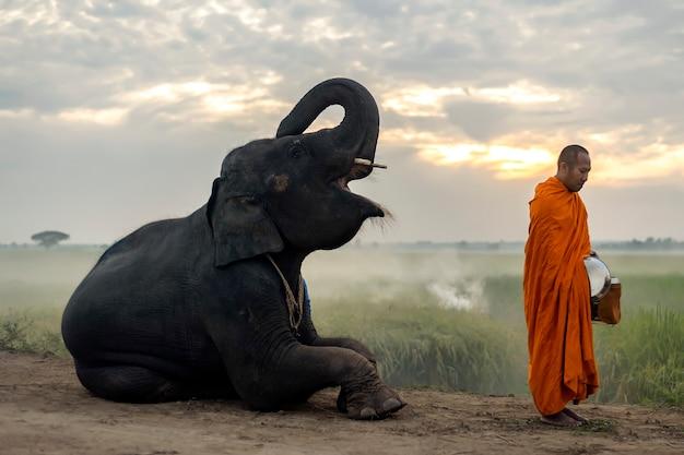 태국 승려들이 서서 아침에 구호품이 오기를 기다리고 있습니다.