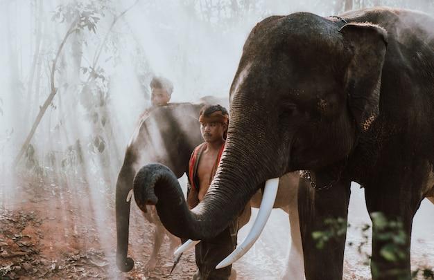 Тайские пастухи в джунглях со слонами. исторические моменты жизни из культуры таиланда