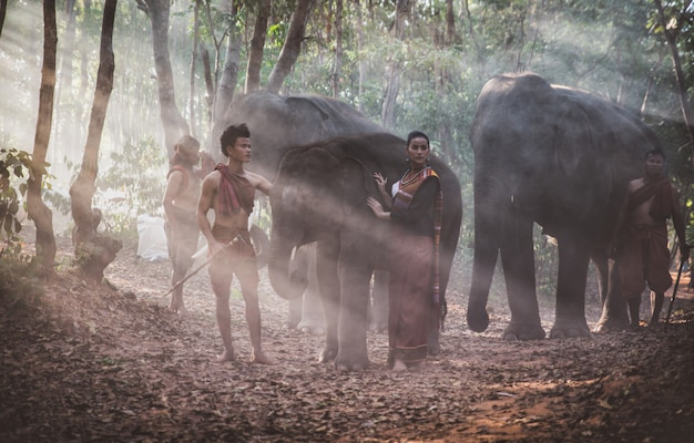 Thai shepherds in the jungle with  elephants. historic lifestyle moments from thailand culture