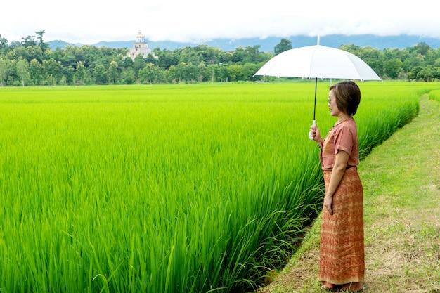 Тайская женщина стоит на зеленом рисовом поле,