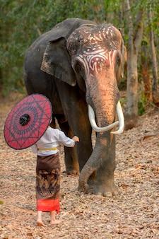Тайские женщины в традиционных национальных костюмах стоят и ласкают хобот слона, у которого красивые семена кунжута