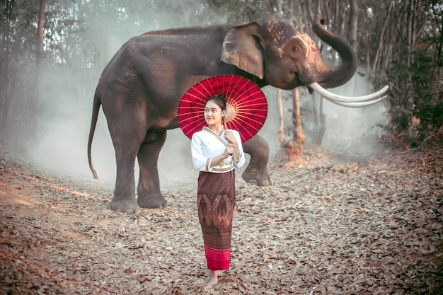 Thai women in national costumes standing, holding a red umbrella and posing with a thai elephant in surin, thailand