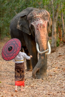 Thai women in traditional national costumes standing and caressing the trunk of an elephant that has beautiful sesame seeds