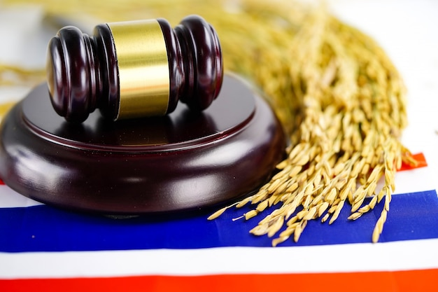 Thailand flag and judge hammer with gold grain from agriculture farm. law and justice court concept.