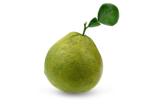白のタイサイアムルビーザボンフルーツ