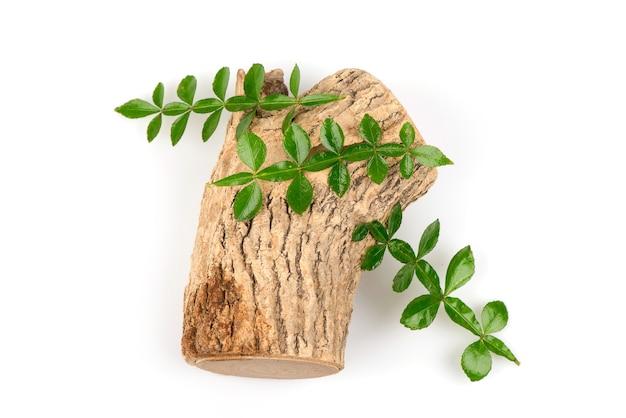 タナカ、木材と緑の葉が分離されました。上面図フラットレイ。