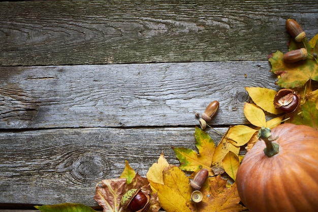 Thanksgiving autumn background, dark wooden surface with pumpkins, withered leaves, acorns and chestnuts, selective focus