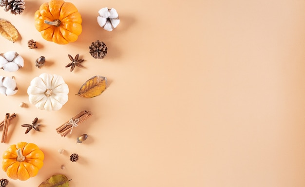 Thanksgiving background decoration from dry leaves and pumpkin on  pastel background