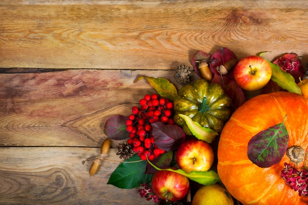 Thanksgiving background with orange pumpkin, green squash, .