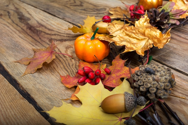 Thanksgiving background with pumpkin, acorn, barberry and golden maple leaves wreath,