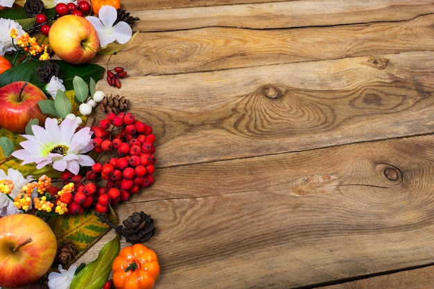 Thanksgiving background with rowan and white daisy, copy space