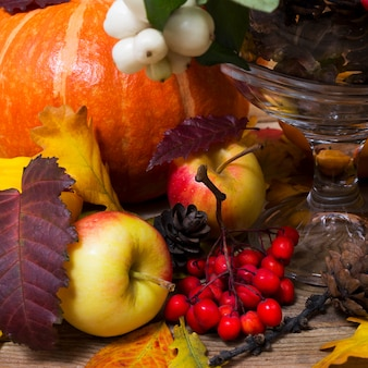 Thanksgiving background with snowberry and pumpkin,