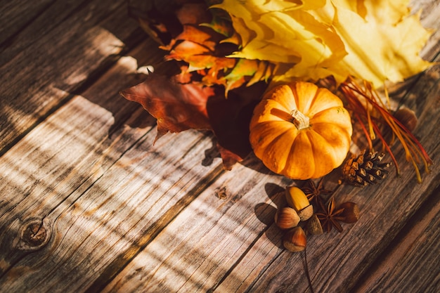 Thanksgiving card bouquet of bright yellow red maple leaves and pumpkin on a wooden background