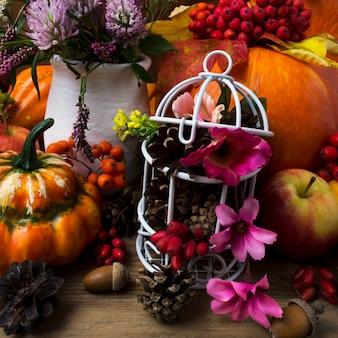 白い鳥かごとピンクの花で感謝祭の目玉