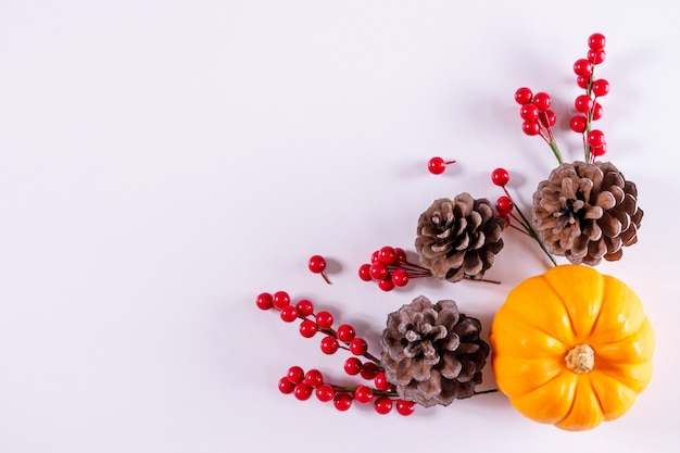 Thanksgiving day or autumn composition decoration from pumpkins, red berries on a white .
