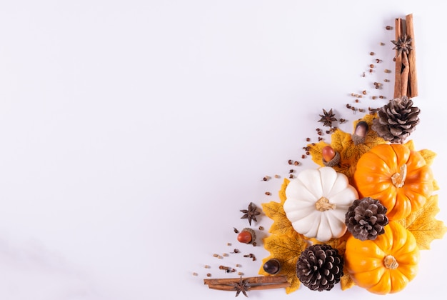 Thanksgiving frame pumpkins, pine cone  and dry leaves on a white background. top view.
