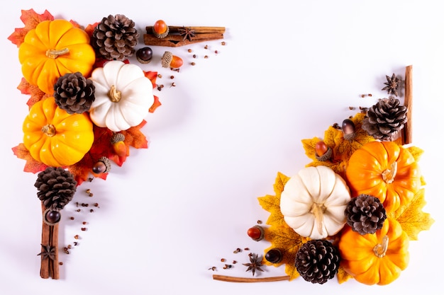 Thanksgiving greetings. yellow and white pumpkins and pine cone on a white . top view.