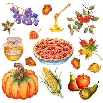 Thanksgiving set pumpkin cherry pie apples and pears corn grapes honey rowan acorns and leaves