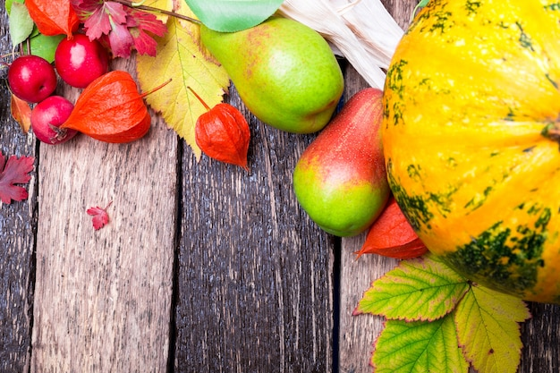 Thanksgiving with autumn fruits and gourds on a rustic wooden table.