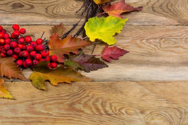 葉と木製の背景にナナカマドの果実と感謝祭の花輪