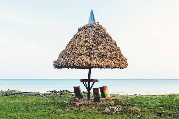 背景の明るい青い海に波がうねる砂浜のピクニックテーブルを覆うわらぶき屋根の傘。カリフォルニア。ピクニックの結果